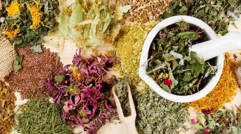 травы для здоровья и красоты