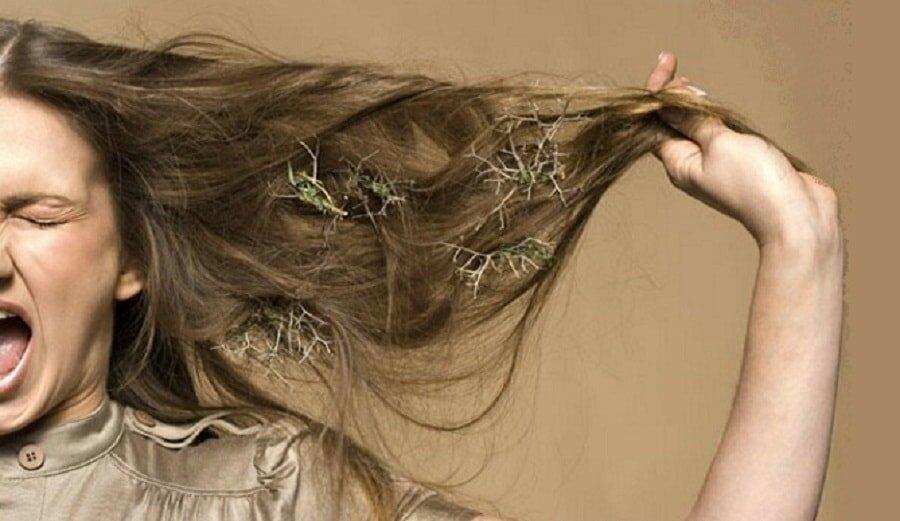 тусклые выпадающие волосы